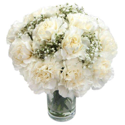 clare-florist-simply-sublime-white-carnations-fresh-flower-bouquet
