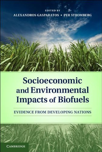 Socioeconomic and Environmental Impacts of Biofuels: Evidence from Developing Nations