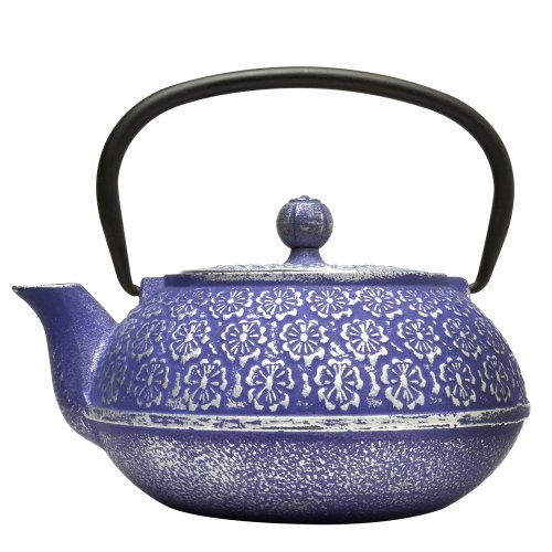 Primula Teapot with Stainless Steel Infuser and Loose Green Tea Packet, 40-Ounce, Blue Floral