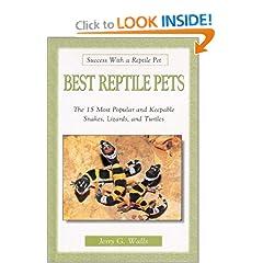 My Pet Lizard: Why I am getting a pet lizard