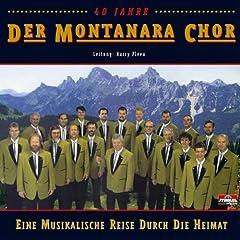 Das Badner-Lied (Radio Version)