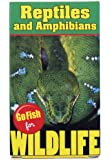 Go Fish for Wildlife Reptiles & Amphibians Toy, One Color