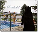 img - for Domesticated: Photographs by Amy Stein book / textbook / text book
