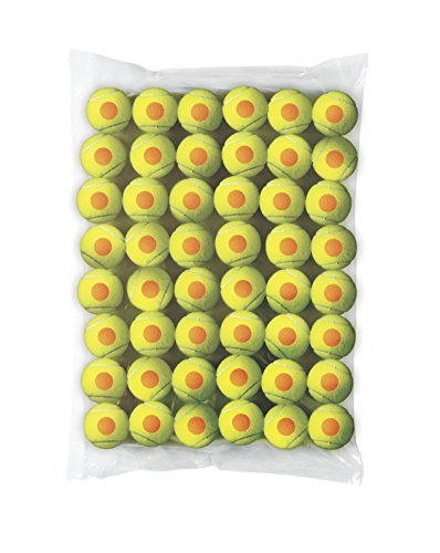 Wilson Starter Ball 48 Pack, Yellow, 6.2, WRT13730B