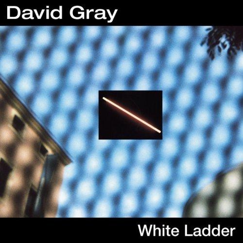 White Ladder