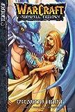 Warcraft: v. 1 Dragon Hunt (Warcraft: Sunwell Trilogy)