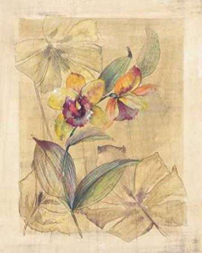 paul-hargittai-bahama-breeze-i-kunstdruck-4572-x-6096-cm