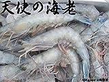 お刺身用 天使の海老1kg ニューカレドニア産 ランキングお取り寄せ