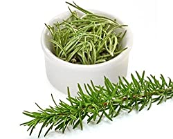 ROSEMARY SEEDS (AVG 30-50 SEEDS) X 2 PKTS SOLD BY GARDEN NEEDS