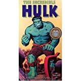 Incredible Hulk Model Kit