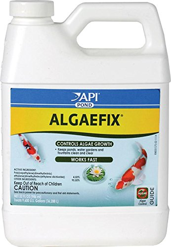 api-pondcare-algaefix-alage-control-32-ounce