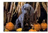 Weimaraner (Pup with Pumpkins)DOG 60 Pie...