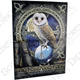 Spell Keeper - Large (70cm x 50cm) - Owl on Crystal Ball with Pentagram Amulet - Fantastic Design by Artist Lisa Parker - Canvas Picture on Frame Wall Plaque / Wall Art
