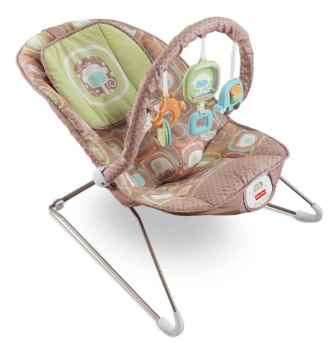 Review Of Fisher-Price Comfy Time Bouncer