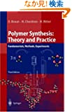 Polymer Synthesis: Theory and Practice : Fundamentals, Methods, Experiments