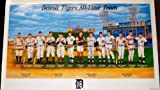 Detroit Tigers All Time Team Poster