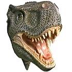 Tyrannosaurus Rex T-Rex 3-D Wall Mounted Head