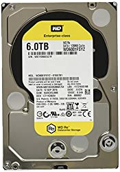 WD 6TB RE Enterprise� Internal Hard Drive (WD6001FSYZ)