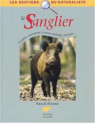 Le Sanglier : Description, comportement, vie sociale, mythologie, observation...