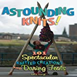img - for Astounding Knits!: 101 Spectacular Knitted Creations and Daring Feats book / textbook / text book