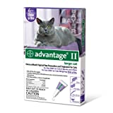 Bayer Advantage II Purple 6-Month Flea Control for Cats, 9-Pound