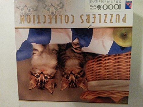 Picnic Kitten's