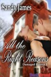 img - for All The Right Reasons [Damaged Heroes 3] (BookStrand Publishing Romance) book / textbook / text book