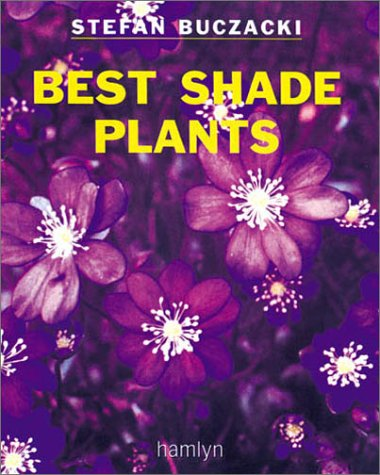 Best Shade Plants (Amateur Gardening Guide)