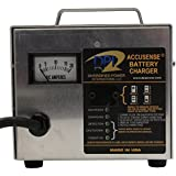 Yamaha G29/Drive 2007-Up Golf Cart 48 Volt 17 Amp DPI Charger with Relay