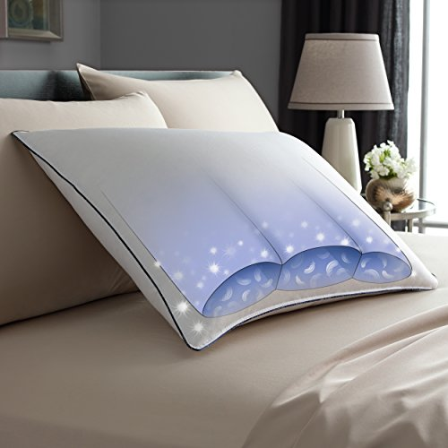 Bedding Online Shopping back-1049007
