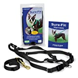 Premier Pet Sure Medium Fit Dog Harness with Matching Car Control Strap, Black