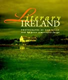 img - for Literary Ireland book / textbook / text book