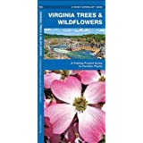 Virginia Trees & Wildflowers: A Folding Pocket Guide to Familiar Plants (Pocket Naturalist Guide Series)