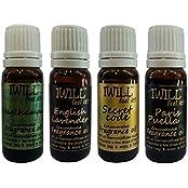 Iwill Premium Fragrance Oil For Diffuser Burner, Potpourri, Cooler & Mopping (Nagchampa, English Lavender, Secret...