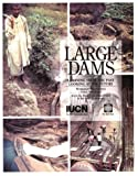 img - for Large Dams: Learning from the Past, Looking at the Future book / textbook / text book