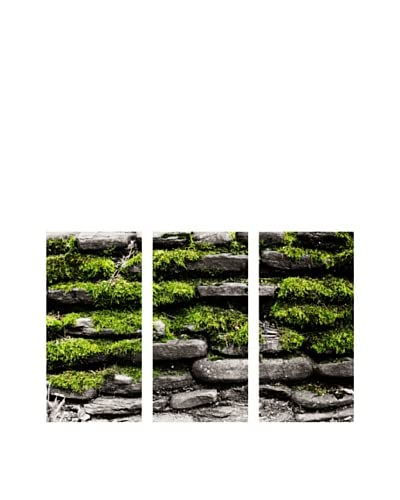 Art Addiction Stone/Moss, Triptych As You See