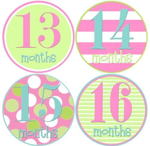 Mumsy Goose Baby Girl Stickers Monthly Age Stickers 13-24 Months