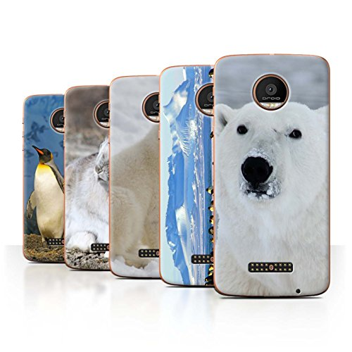 STUFF4 Phone Case / Cover for Motorola Moto Z Force/Droid / Pack 6pcs / Arctic Animals Collection (Mr Bump Ice Pack compare prices)