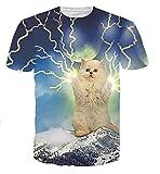 Wiboyjp メンズ tシャツ 猫 ネコ 3d ヒップホップ サンダー 稲光 雷 稲妻 スウェット ストリート系 t shirt 半袖tシャツ 春 夏 猫柄 プリント おもしろ おしゃれ ユニセックス