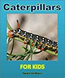img - for Kids Books: Caterpillars For Kids - Discover the Wonderful World of These Amazing and Delightful Insects (Childrens Readers) book / textbook / text book