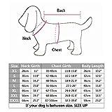 ThinkPet Hundemantel, Hundebekleidung Winterjacke reversibel, Plaid, L, Beige -