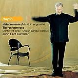 echange, troc John Eliot Gardiner - Haydn - Nelson Mass / Theresienmesse