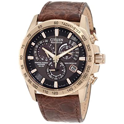 Citizen Men's AT4003-04E Perpetual Chrono A-T Limited Edition Watch: Citizen: Watches