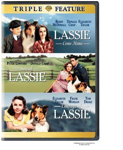 of courage lassie