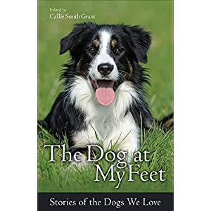 The Dog at My Feet: Stories of the Dogs We Love
