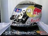 F1 レプリカヘルメット セバスチャン・ベッテル 2010年 アブダビ ワールドチャンピオン Lサイズ(59-60cm)【受注生産】