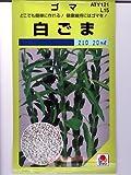 白ゴマ タキイのゴマ種です