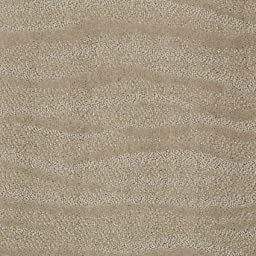 3\'x5\' Surfs Up Oyster | Pattern Cut Pile and Loop Textured Area Rug