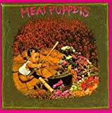 Meat Puppets 1