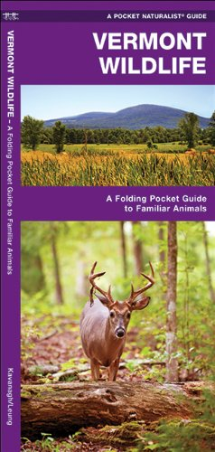 Vermont Wildlife: A Folding Pocket Guide to Familiar Species (Pocket Naturalist Guide Series)
